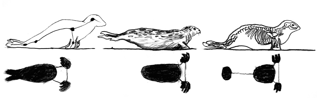 Seal movement